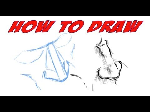 How to Draw a Nose - Tutorial - Narrated