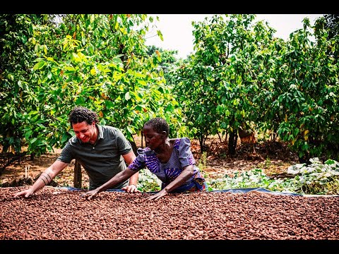 How Direct Trade Changed the Lives of a Group of Tanzanian Cocoa Farmers