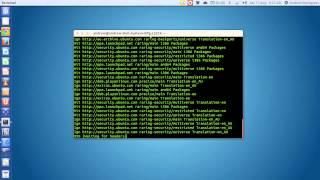 In-depth - Installing Microsoft Office 2010 in Ubuntu 13.04