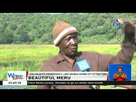 Lewa wildlife conservancy, Lake Nkunga among key attractions in Meru