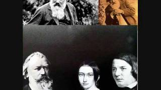 Brahms Clarinet Quintet in B minor op 115 2nd.wmv