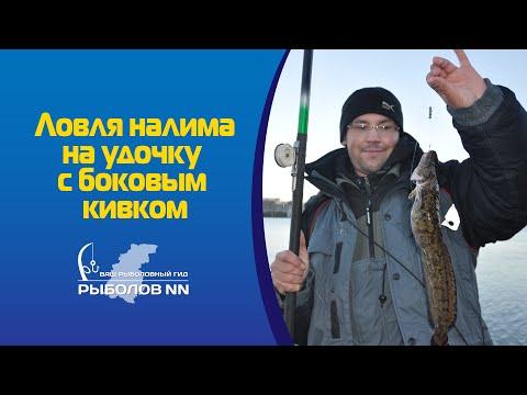 ловля налима в октябре на поплавочную удочку