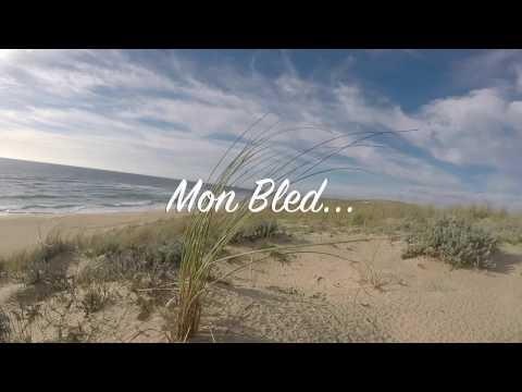 """Composition """"Mon Bled"""" pour les amoureux du Médoc"""