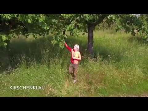 Autonomer Drohnenflug 4K