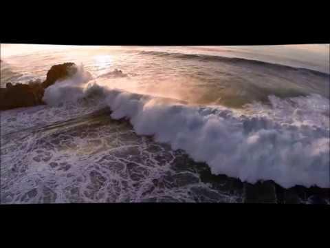 Dana Winner - Dust In the Wind