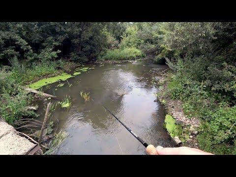 В ЭТОЙ МАЛЕНЬКОЙ РЕЧКЕ КЛЮЮТ КИЛОГРАММОВЫЕ РЫБИНЫ. Рыбалка на спиннинг.