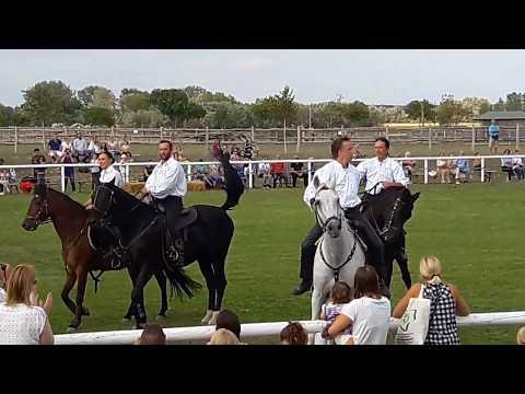 Лошадиный праздник (Pferdefest) в Schlosshof (NÖ)