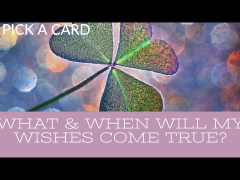 WHAT AND WHEN WILL MY WISHES COME TRUE?