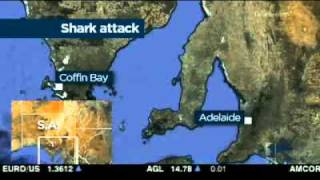 Shark Attack Prompts Safety Rethink