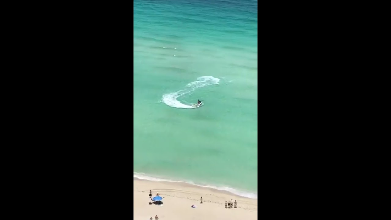 Shark showing up in Sunny Isles Beach , Florida  07/09/2017
