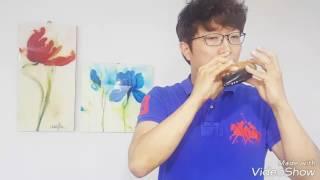 인생의회전목마(人生のメリ-ゴ-ランド)오카리나 이병구