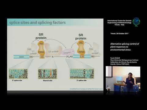 P. Duque - Alternative splicing control of plant responses t