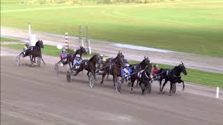 Vidéo de la course PMU WOLVEGA LIVE TROPHY