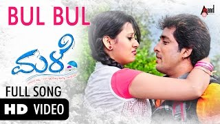 "Male|""Bul Bul""