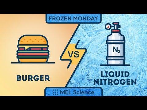 Experiment — Frozen Big Mac