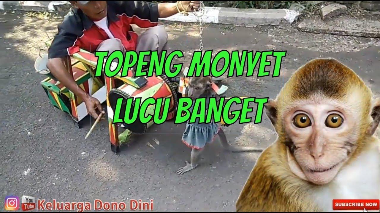Topeng monyet lucu di kelilingi anak anak, di kasih pisang