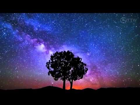 Arctic Moon - Starships Over Alice (Original Mix) [Music Video] [FSOE]