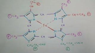 How draw haemoglobin molecule structure ( Heme  molecule )