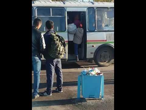 Автобус Кострома- Красный