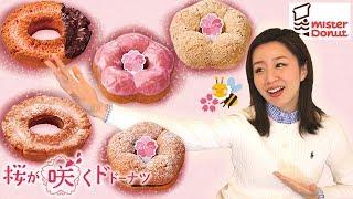 【ミスド】桜が咲くドドーナツ🌸桜餅ドーナツ!?etc全種レビュー💁