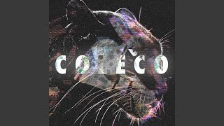 Visions of Coleco