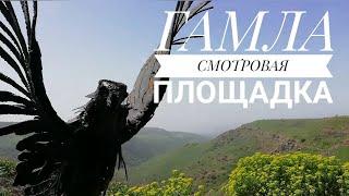 ГАМЛА СМОТРОВАЯ ПЛОЩАДКА. ИЗРАИЛЬ. март 2020