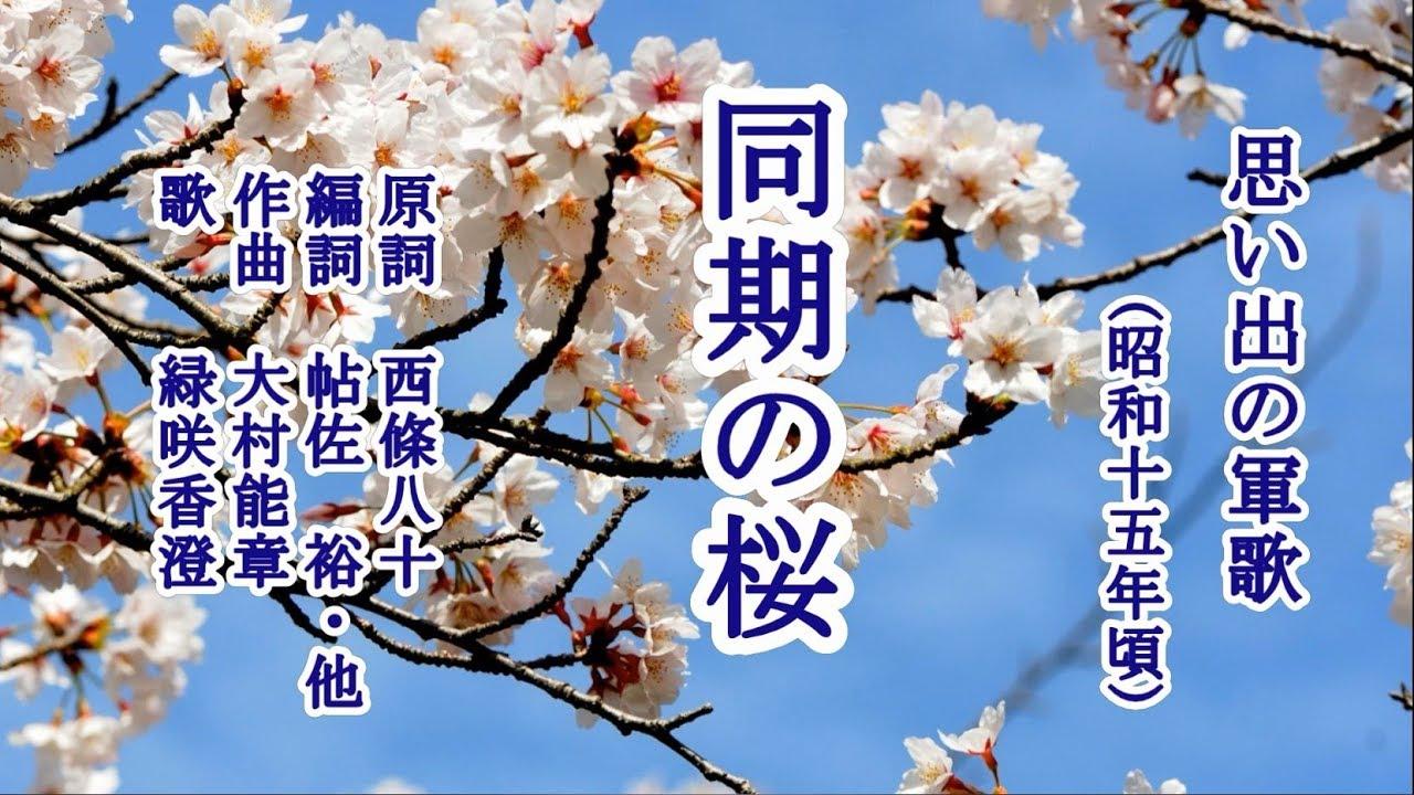 桜 同期 歌詞 の
