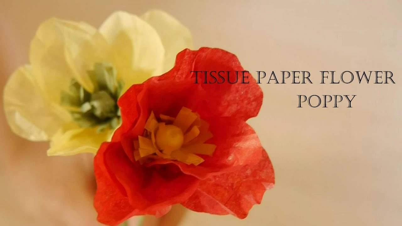 How To Make Tissue Paper Flower   Poppy   YouTube