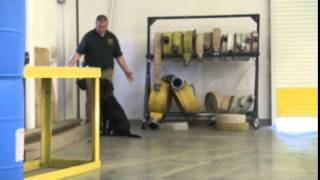 Tn State Fire Marshal's Office Bomb And Arson Swears In K9 Agents!