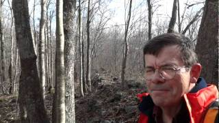 Old Connecticut Path: Crossing the Great Wall of Westford & Mt. Hope Valley - Ashford/Westford,