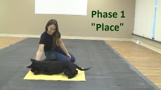 "How To Train A Dog To Go To A ""place"" Mat (k9-1.com)"