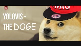 Yolovis - The Doge (Ylvis - The Fox (What Does the Fox Say?) Parody)