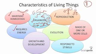7 characteristics of life The characteristics of living things things that can perform all life functions, or characteristics  that living things have seven characteristics.