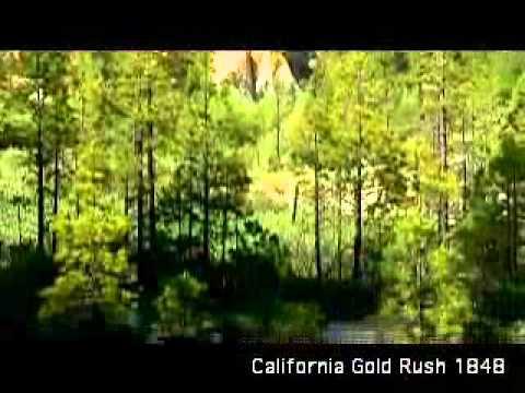 Gold Rush   Environment