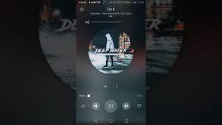 King bvnks - Freestyle Dsl K