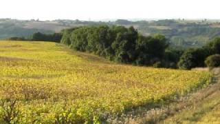 Near Bazens, Lot-et-Garonne, France
