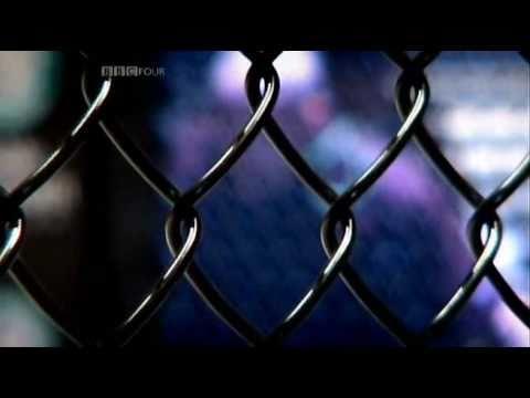 MMA from Hawar News of Sport