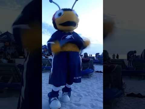 Tampa bay lightning mascot thunder bug