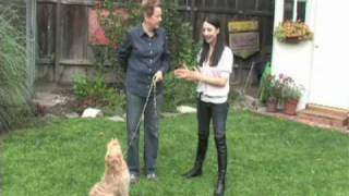 Dianna Buck On Americas Dog Trainer (1 Of 2)