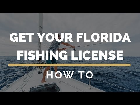 How To Get Your Florida Fishing License