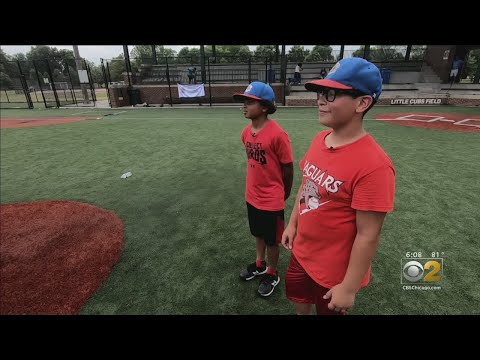 Fred And Angi - SUPPORT: Roberto Clemente Little League Team Looking For A Little Help