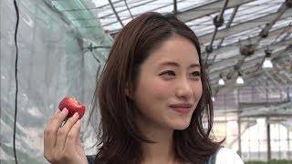 Satomi Ishihara (石原さとみ) _ Find my Tokyo Challenge 1-543