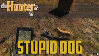 The Hunter - Stupid Dog