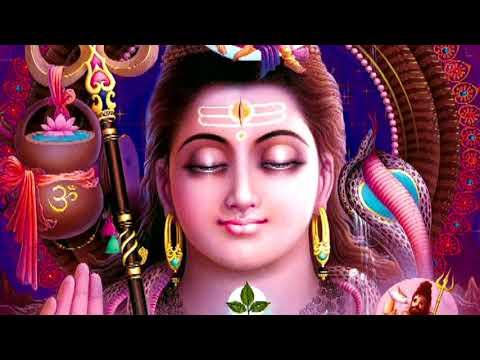 Bholenath Hain Bade Manmauji I Shiv Bhajan, VIDHI SHARMA, Full HD Video, Maano To Main Sabki Maa Hun