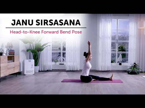 Janu Sirsasana   Head-to-Knee Forward Bend Pose   Yogic Fitness