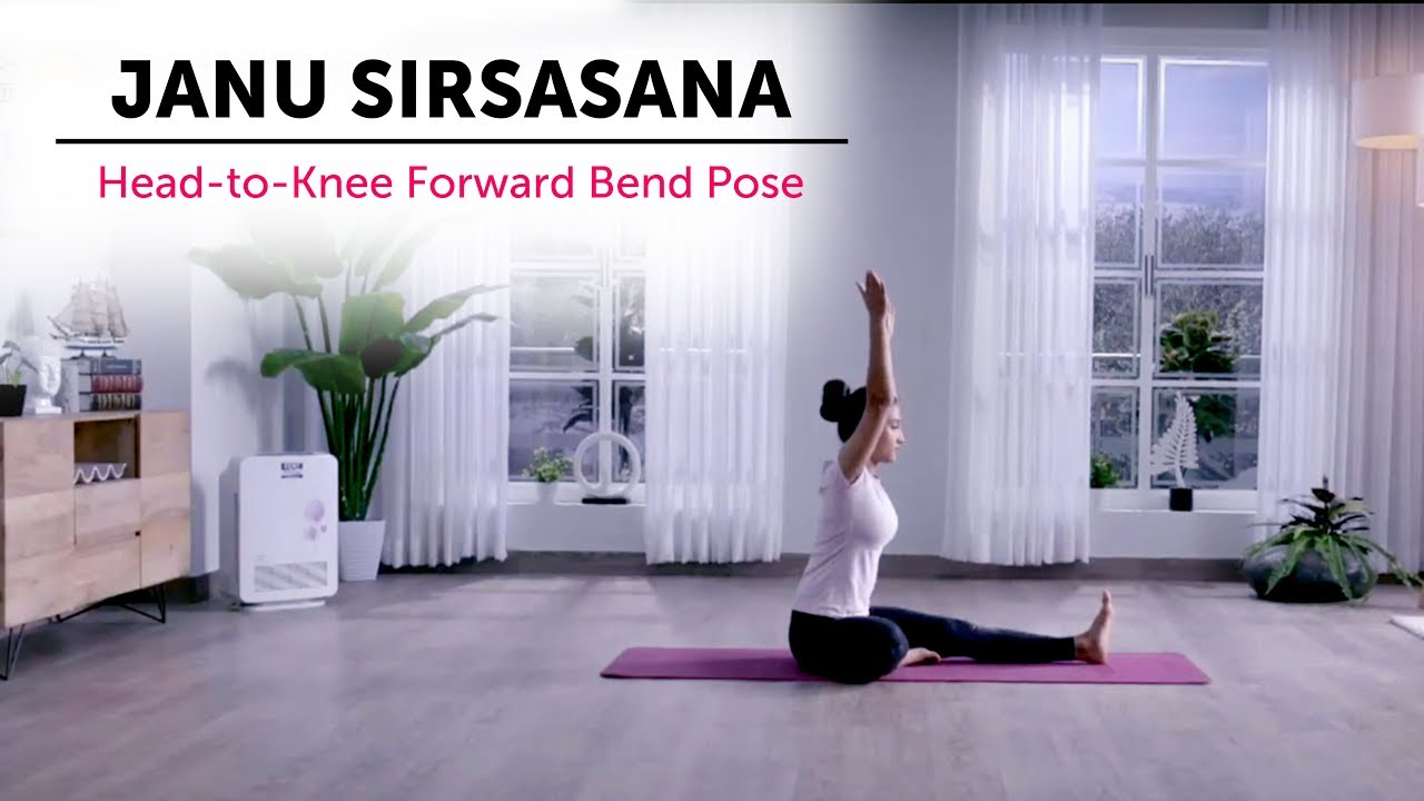 Janu Sirsasana Art Of Living