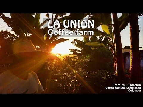 La Unión Coffee Farm - Rural Lodge   Coffee Region, Colombia