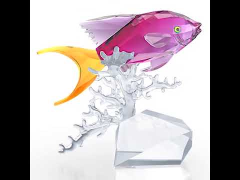 Swarovski - Anthias Fish