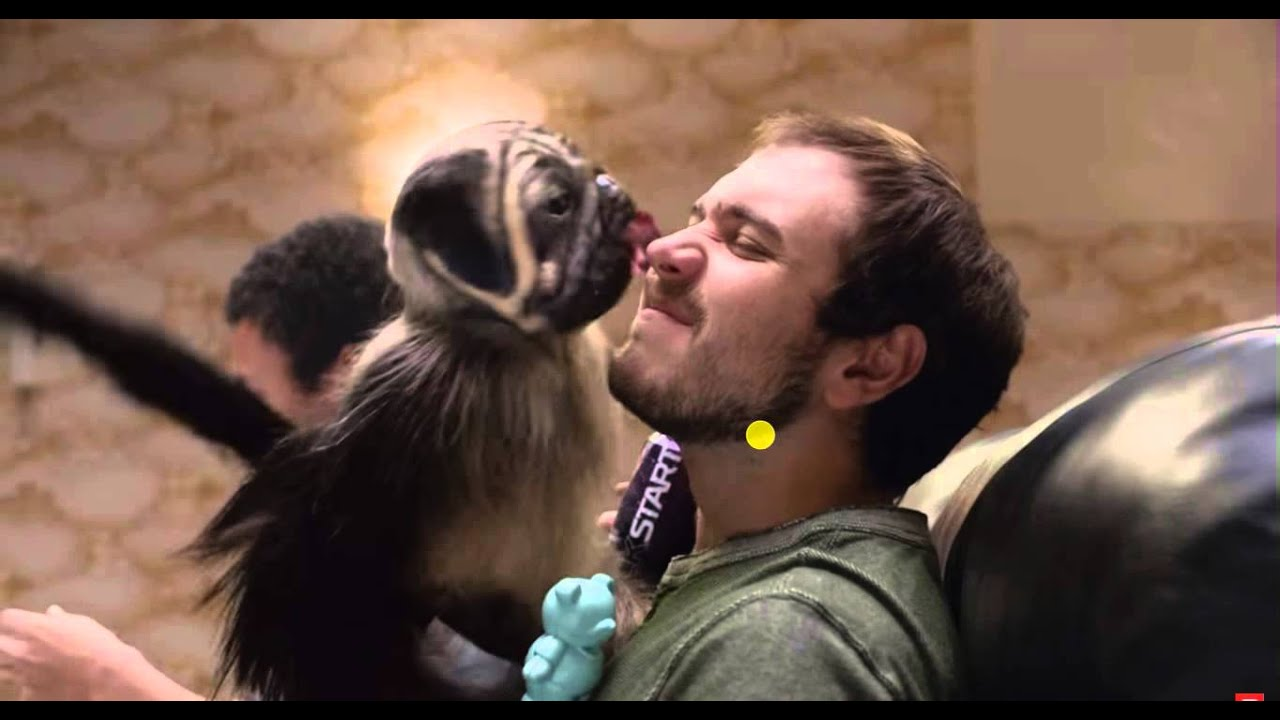 Puppy Monkey Baby Mtn Dew Commercial Youtube