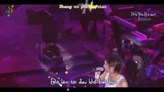 [Vietsub + Kara] 谢谢你的爱1999 - Cám ơn tình yêu của em 1999 - Tạ Đình Phong (Live)
